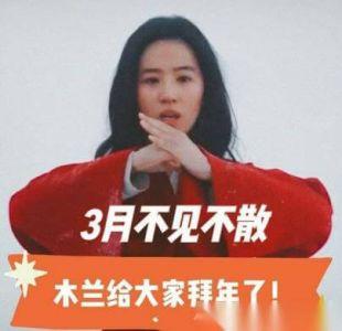 刘亦菲马上翻跟头 打戏功底不减当年 网友:票钱已备好